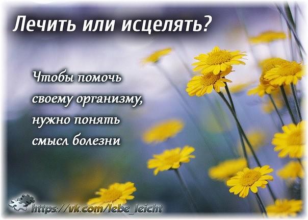 lechit_iscelat